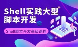 Shell实践大型脚本开发与三剑客精讲课程_Shell脚本高级编程开发实战